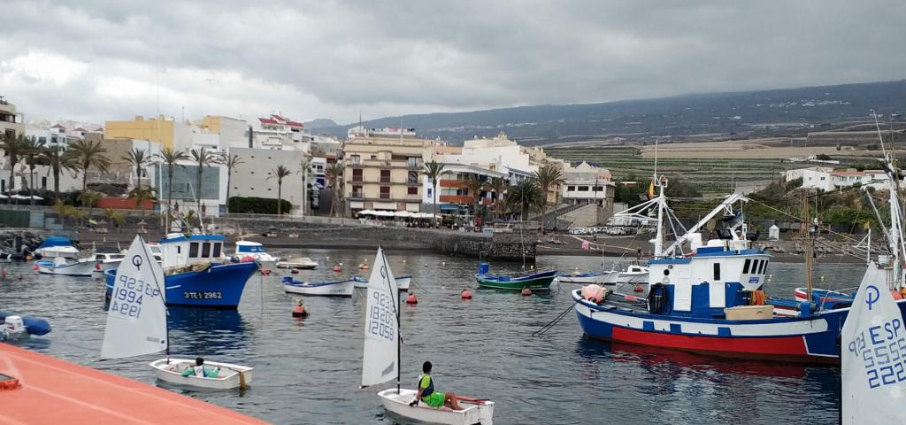 El Gobierno canario convoca ayudas valoradas en 695.000 euros para los gastos corrientes de las cofradías de pescadores. Infórmate.