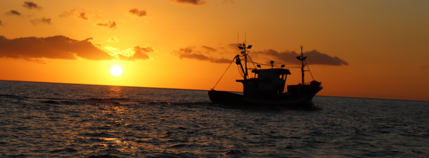 Subvenciones para proyectos para el sector pesquero y acuícola, desarrollo sostenible y conservación del medio marino y la costa