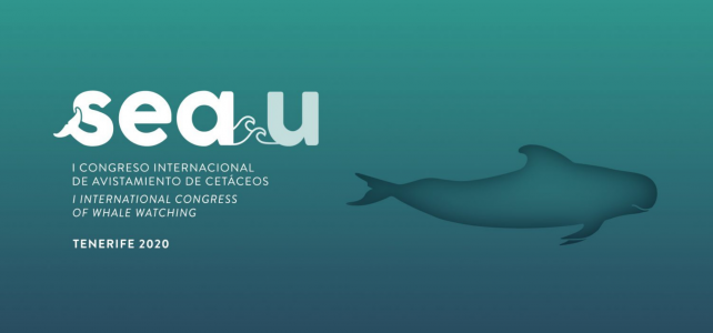Tenerife será la capital mundial del avistamiento de cetáceos