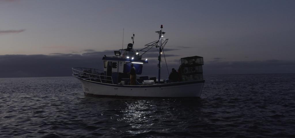 Pesca artesanal: Fondo Europeo Marítimo y Pesca compensan los costes adicionales para la comercialización de la campaña 2018
