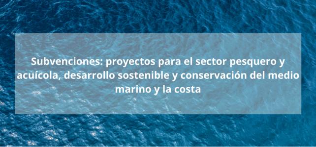 Subvenciones sector pesquero: para proyectos para el sector pesquero y acuícola, desarrollo sostenible y conservación del medio marino y la costa