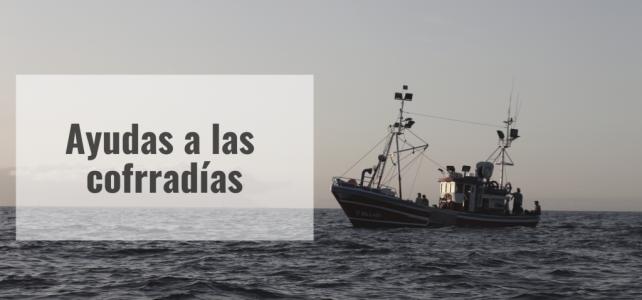 Cofradía de pescadores: El Gobierno canario convoca ayudas valoradas en 695.000 euros para los gastos corrientes
