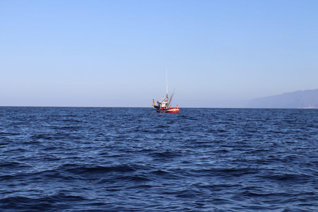 Ayudas al sector pesquero: El Grupo de Acción Costera gestiona para 2021-2022 ayudas por valor de 437.207 euros
