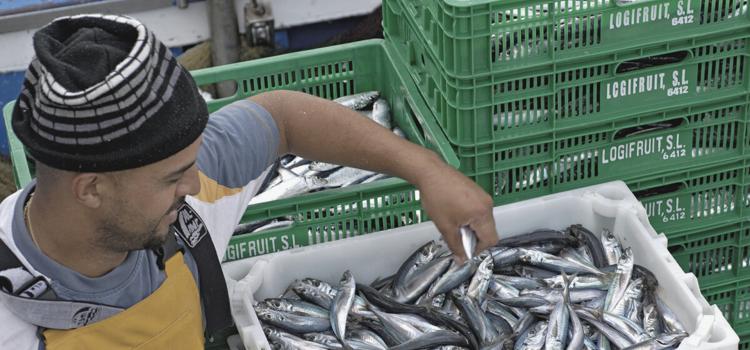 Subvención a las cofradías de pescadores del Gobierno de Canarias